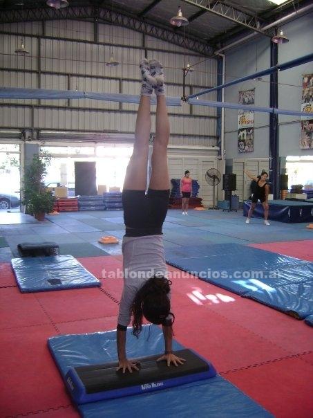 Clubes deportivos: Gimnasia artistica en san miguel, bs as