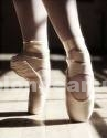 Formacion/cursos: Danza clasica principiantes
