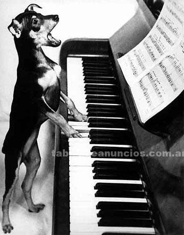 Clases particulares: Clases de piano y teclados