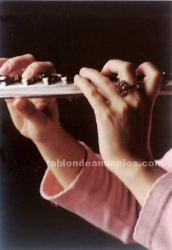 Clases particulares: Flauta traversa, flauta dulce, clases particulares en palermo.