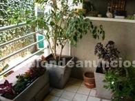 Terraza/Jardín: Jardinero jardines hue mantenimientos y diseÑos