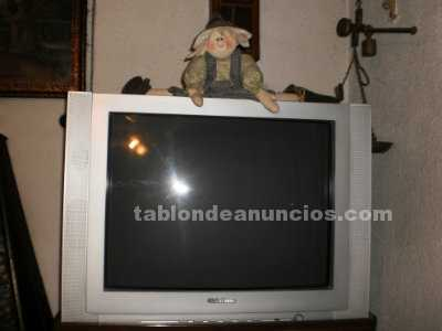 Video/TV/hifi/Telf: Televisor global home 29 pulgadas