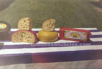 Busco socio: Busco socio capitalista para poner una pime de lacteo o fabrica de queso