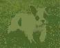 Francés cachorros bulldog de una familia hermosa